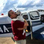Перевозка домашних животных бизнес-джетом